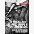 The national army and armed  groups in the eastern Congo