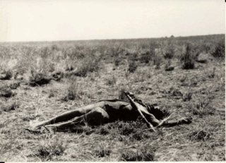 The death of Guek Ngundeng, 8 February 1929 (Coriat's photos, Pitt-Rivers Museum)
